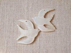画像1: シェルパーツ かもめ羽上に1コ穴