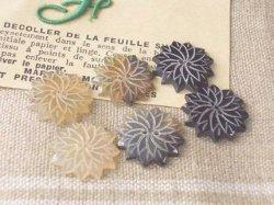 画像1: 水牛角ボタン  菊
